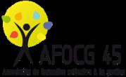 AFOCG 45